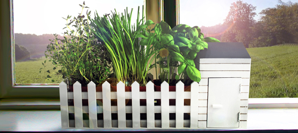 Indoor_Allotment-n-window