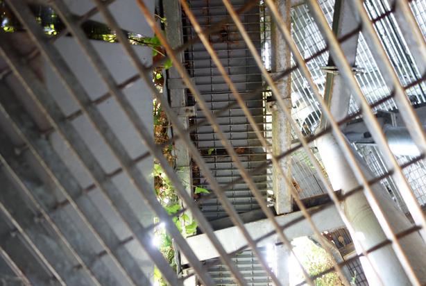geen-side-wall-jardi-tarradellas-barcelona-infrastructure-grid-urbangardensweb