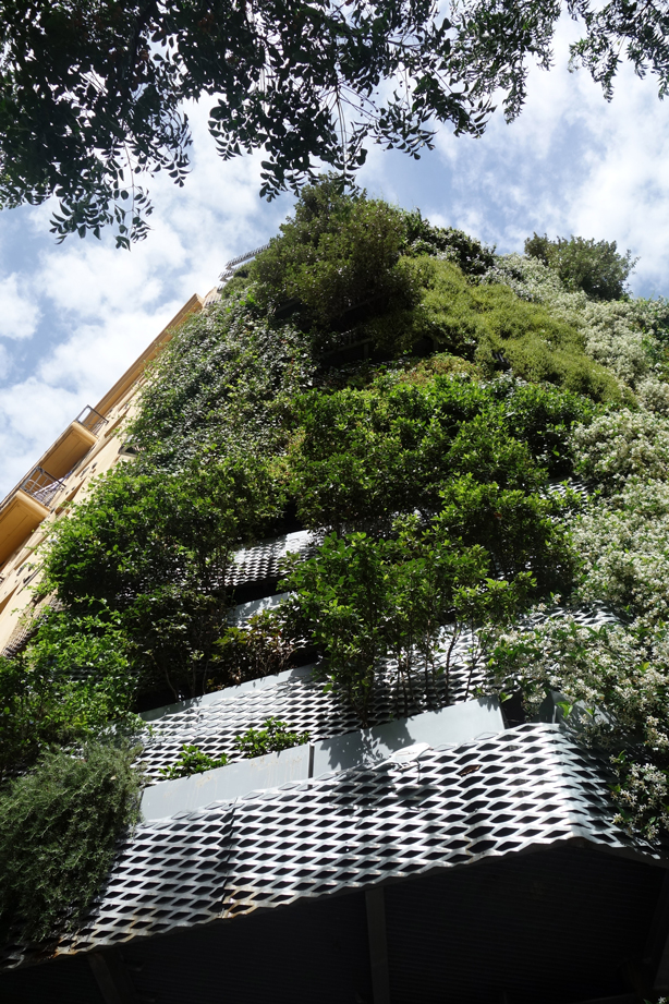 green-side-wall-jardi-tarradellas-barcelona-facade-looking-up-urbangardensweb