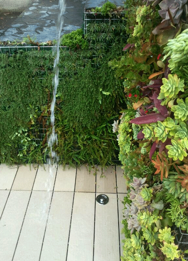vertical-garden-outdoor-shower-granen-urbangardensweb