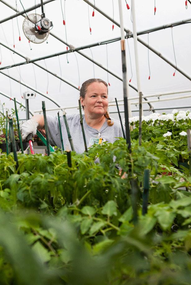 inmate-gardening-in-prison-greenhouse.