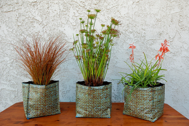 3-self-cleaning-hula-planters-sanctuary-soil