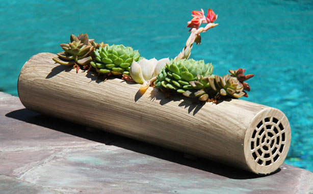 Decor Fiori Cylinders. Indoor Outdoor Cylinder Planters