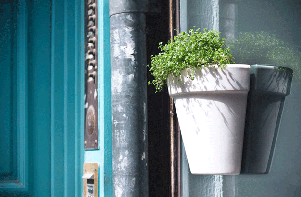 Magnetic Indoor-Outdoor Planter Adheres to Both Sides of Glass ...