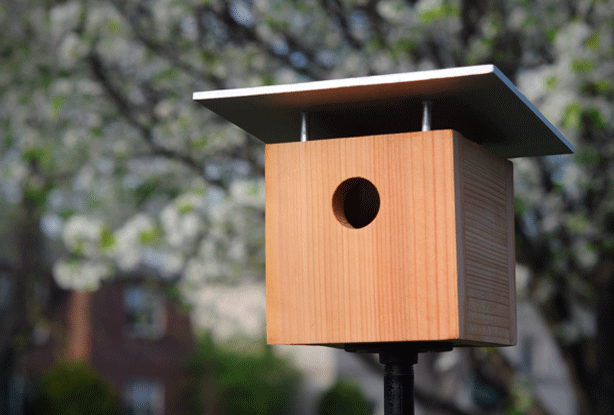 5 Totally Awesome Stylish Modern Birdhouses