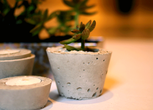 Mini Concrete Planters : Easy diy mini concrete planters for succulents