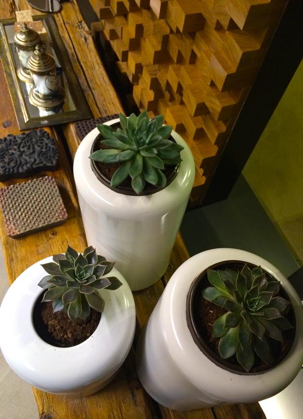 gessi-succulent-planters