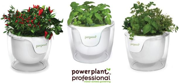 header-power-plant-pro