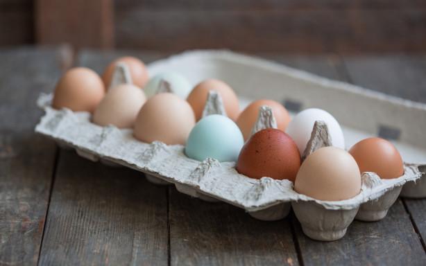 eggs-5