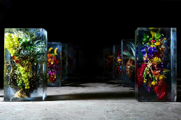 iced-flowers-makoto-azuma-botanical-art-urbangardensweb