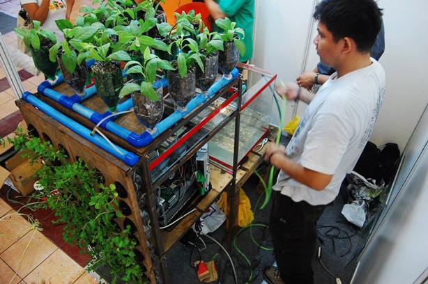biomodd-plant-ecosystem-art-installtion-urbangardensweb