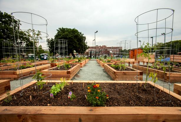 fiskars kicks off community garden initiative. Black Bedroom Furniture Sets. Home Design Ideas