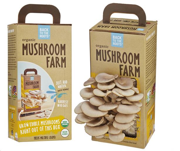 back-to-the-roots-mushroom-farm-urbangardensweb