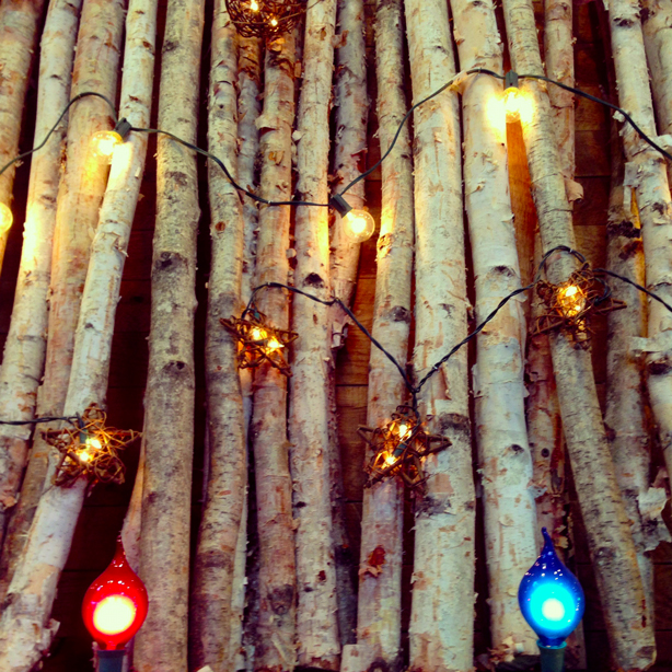 Twig lights for the Holiday Season
