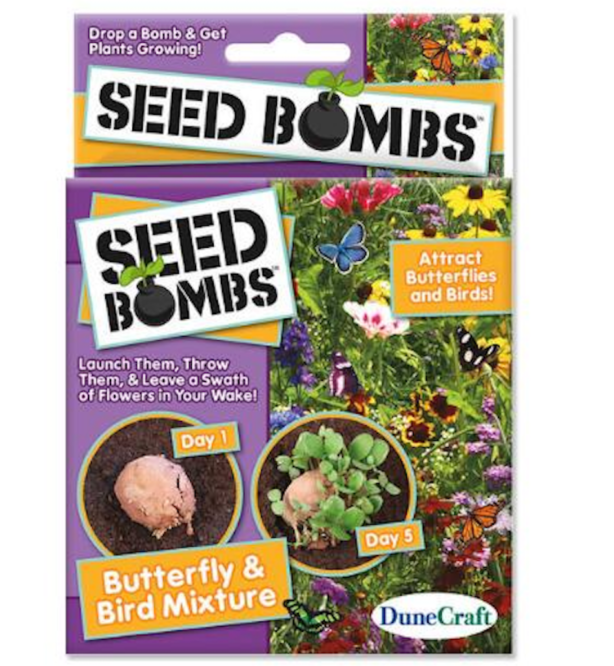 hummingbird seed bombs