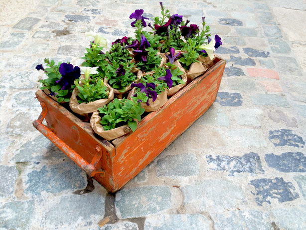temps-de-flors-flower-box-in-street-urbangardensweb