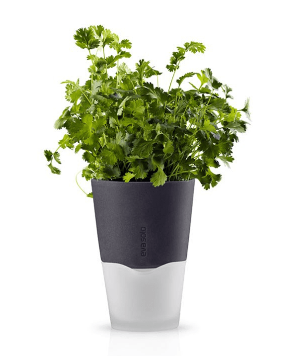 Eva-Solo-North-America-Self-Watering-Composite-Pot-Planter_urbangardensweb