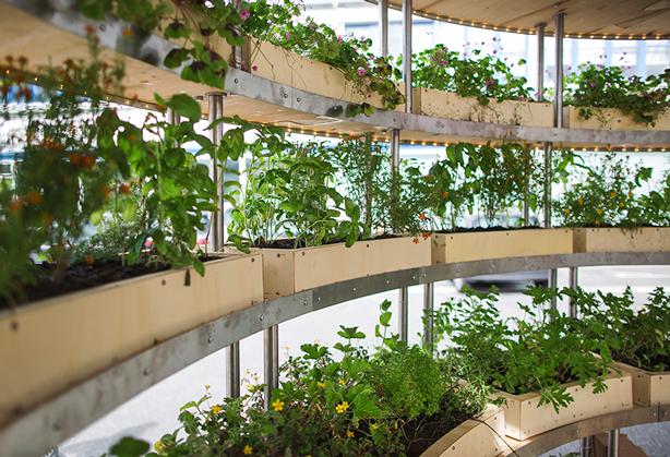 grow-room-interior-copenhagen-space10
