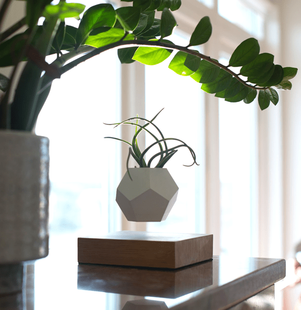 lyfe_levitating-planter-pot-on-table
