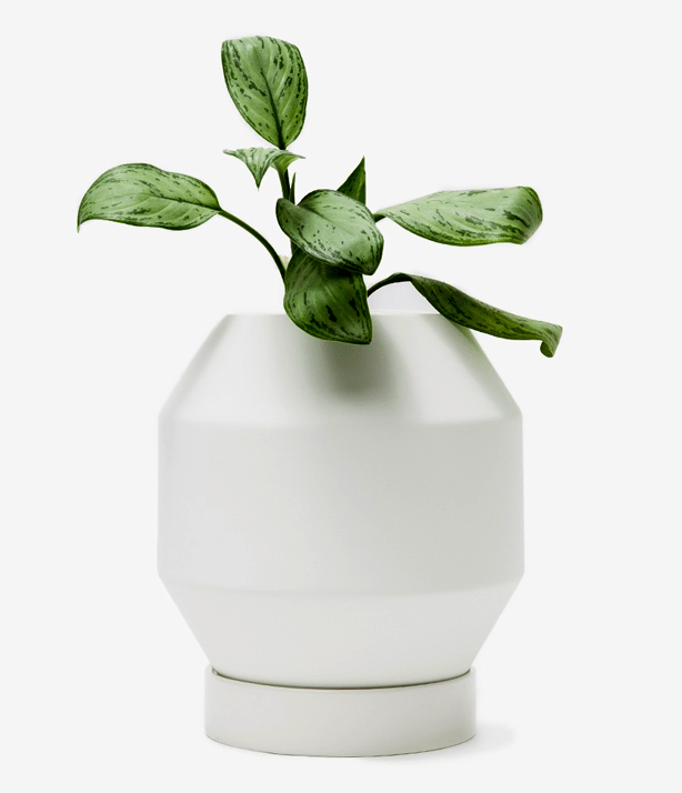 needsupply-vessel-planter-urbangardensweb