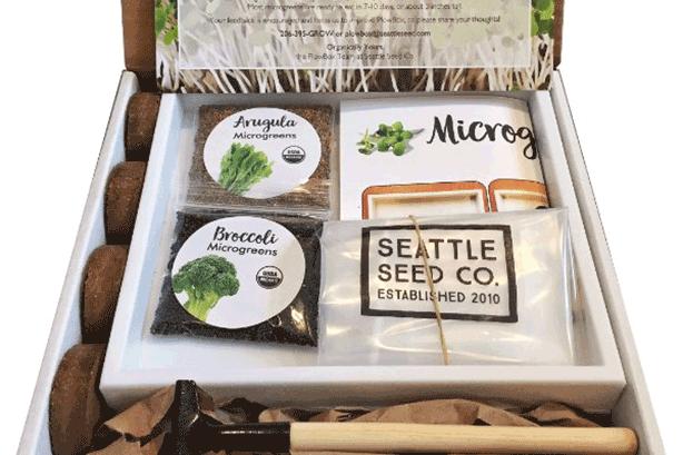 10 Best Gardening Subscription Boxes for Urban Gardeners Urban