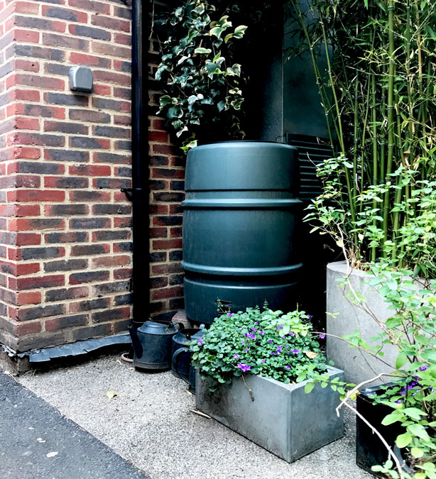 London_secret_garden_urbangardensweb