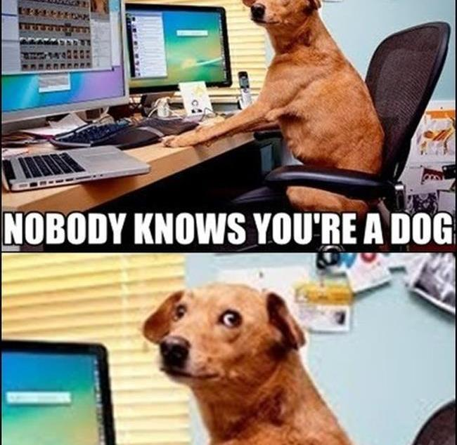 On internet nobody knows you're a dog