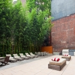 Beautiful Green Courtyard Design Services in New York