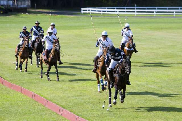 Grass polo action at Farmington Polo Club.