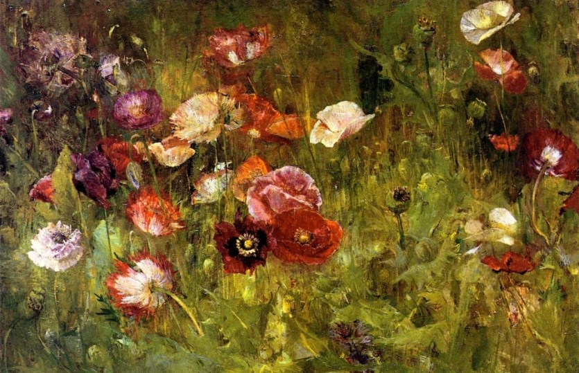 Beguiling the Poppy
