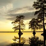 Lake Drummond is located inside the Great Dismal Swamp National Wildlife Refuge, a nature preservation with hiking trails, birdwatching, biking, fishing, boating, and hunting.Virginia Tourism Corporation, www.Virginia.org