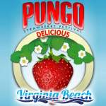 Pungo-Strawberry-Festival