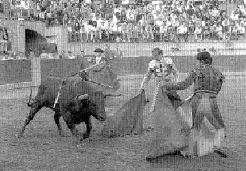 La plaza de toros de Olot