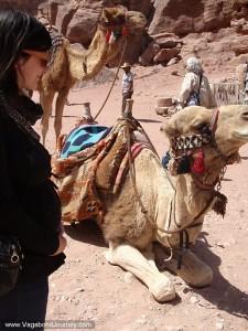 Pregnant traveler in Jordan