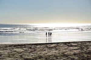 the_beach_7187475620