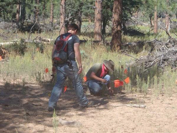 Archaeologists finding a prehistoric site in the Tonto forest of Arizona