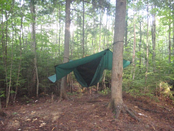 Hennessy Hammock in Maine woods