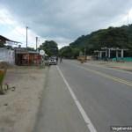 Road Palomino