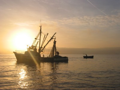 fishing boats in the puget sound at sunset