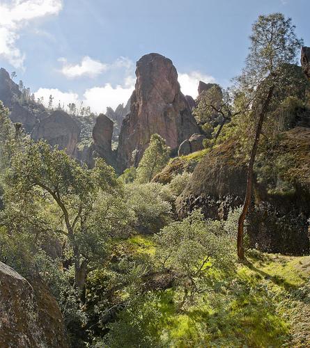 Pinnacle National Park in California