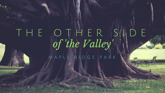 The Other Side of the Valley – Maple Ridge Park