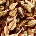 Health benefits of Anise