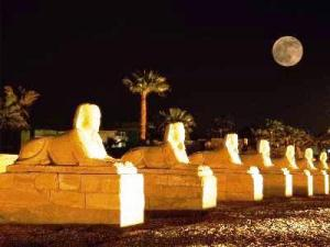 karnac_Luxor_Temple__Egypt_night_karnak_carneros