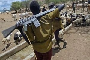 武装的富拉尼牧民