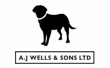aj-wells-sponsors-of-ventnor-rfc-2014-15