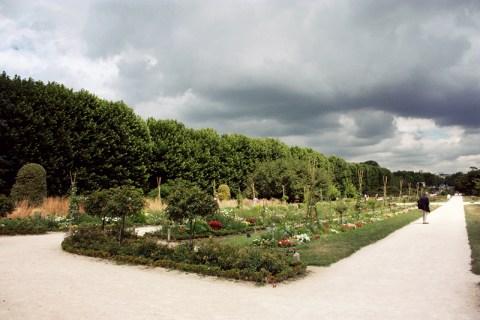 jardinstorm