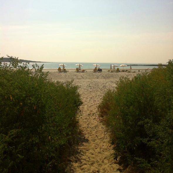 beachumbrellas