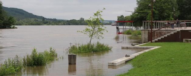 L'état de catastrophe naturelle déclaré Suite aux inondations qui ont touché Vernon du 4 au 10 juin 2016, le ministère de l'Intérieur a reconnu par un arrêté interministériel le 27janvier dernier l'état de catastrophe naturelle. Cette reconnaissance ouvre droit à la garantie des assurés qui ont été lésés par ces inondations.