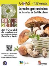 Plazo de inscripción para las Jornadas gastronómicas Buscasetas