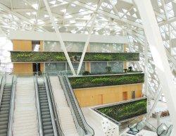 Small Of Indoor Vertical Gardens